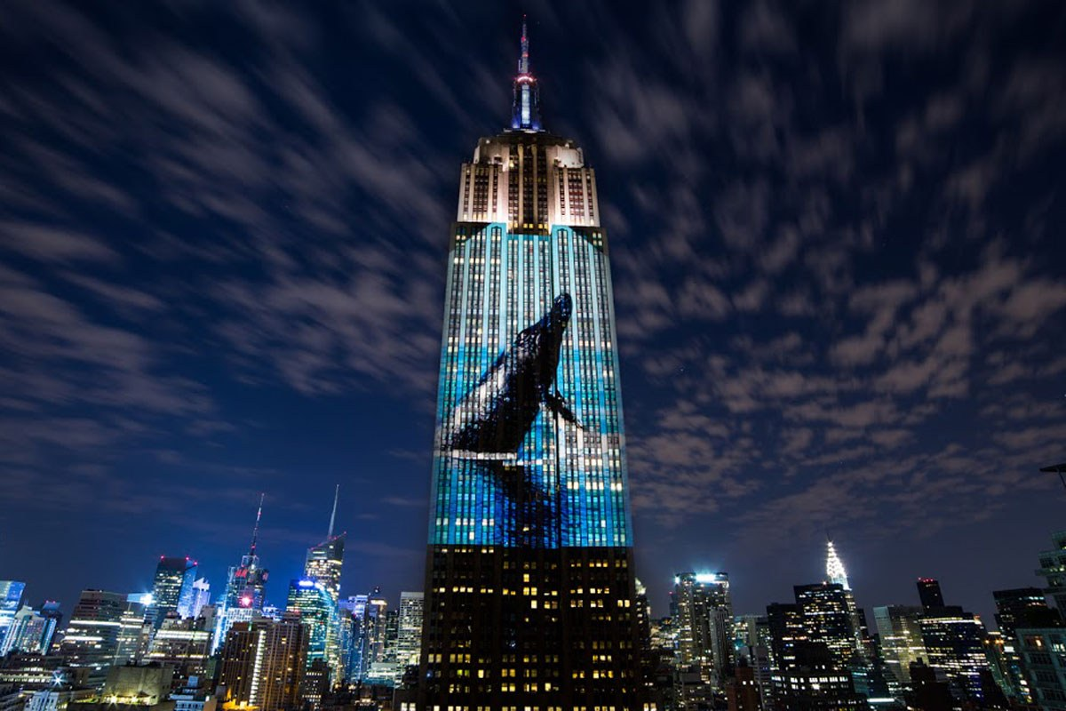 Racing Extinction documentary - whale image lit on skyscraper