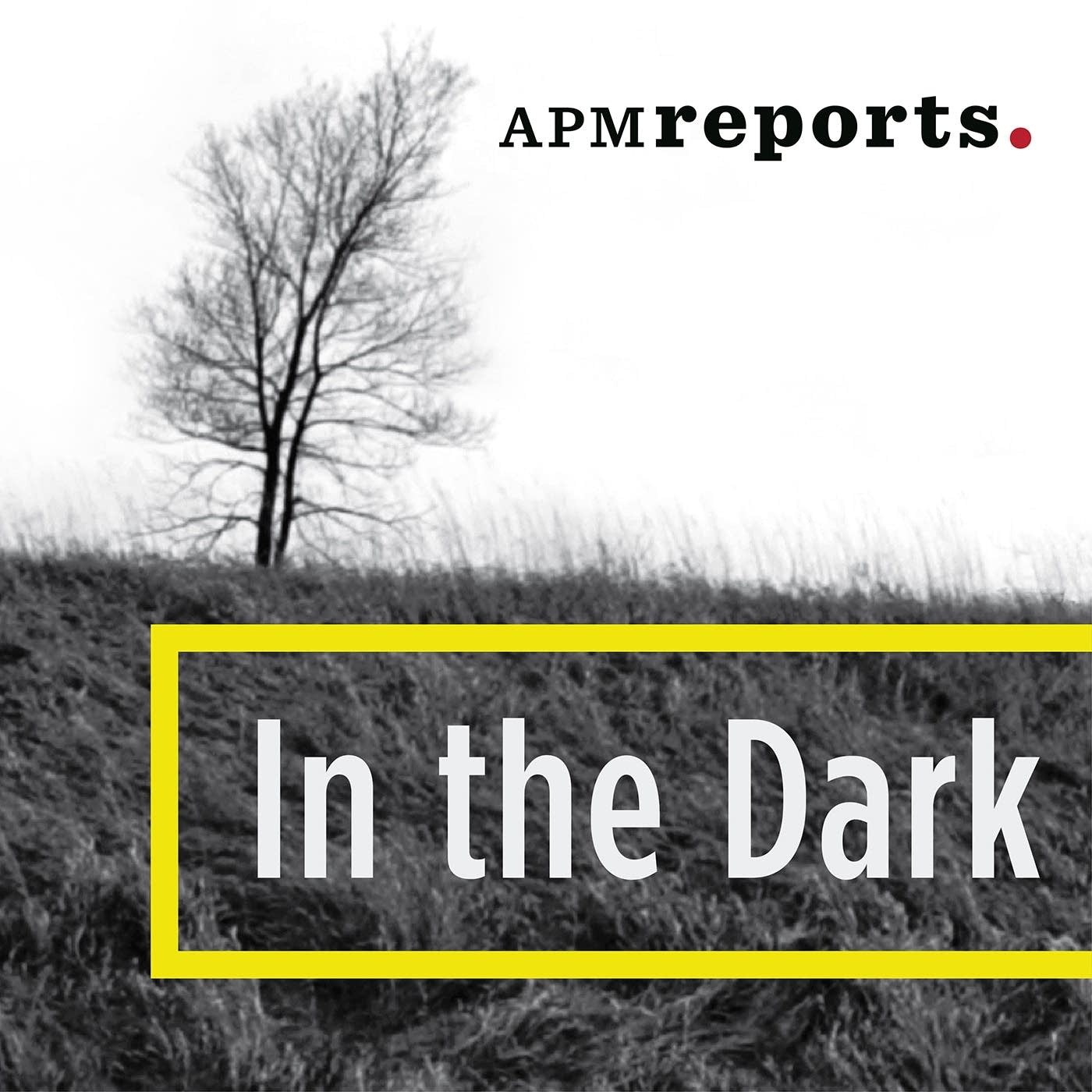In The Dark Logo
