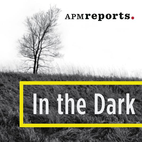 In The Dark Logo